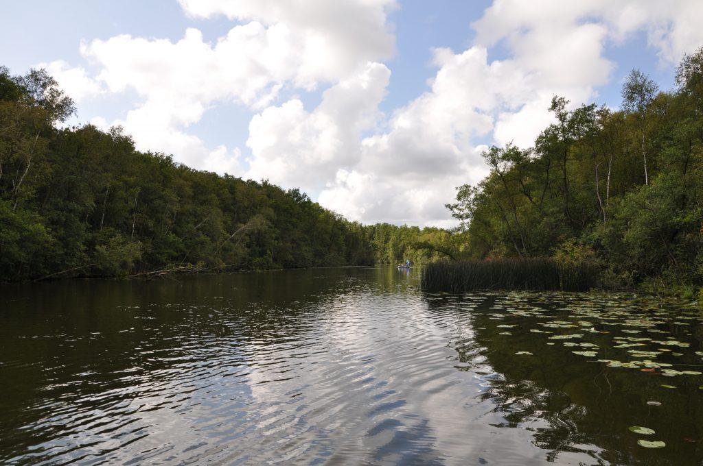 Urlaub auf dem Hausboot - Mecklenburgische Seenplatte