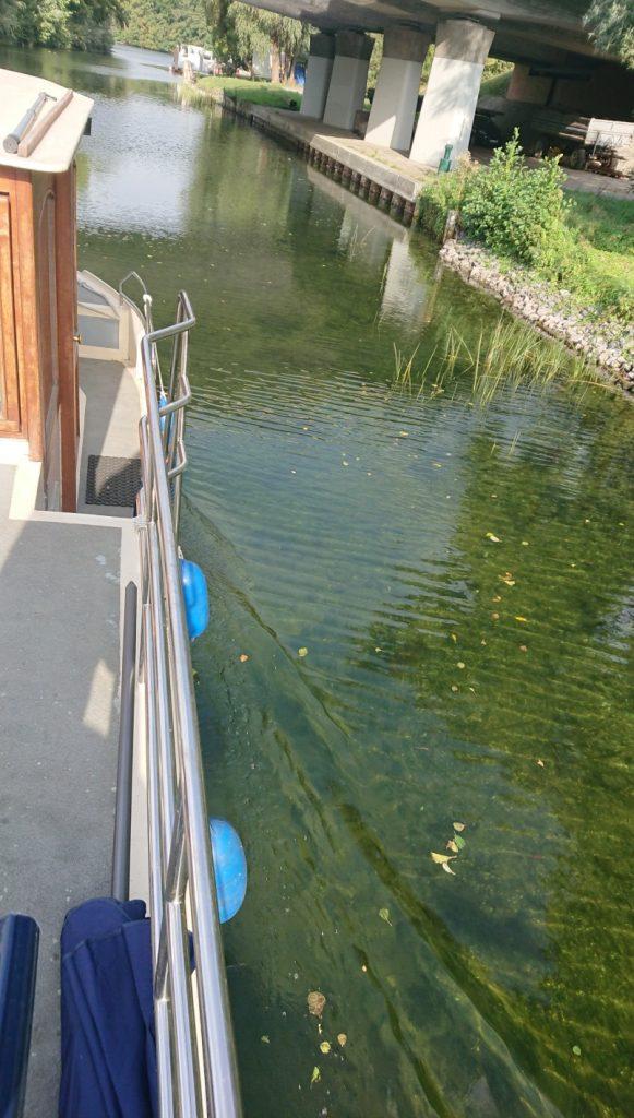 hausboot Kormoran - Blick aufs Wasser